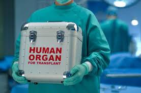 μεταμοσχευση οργανων